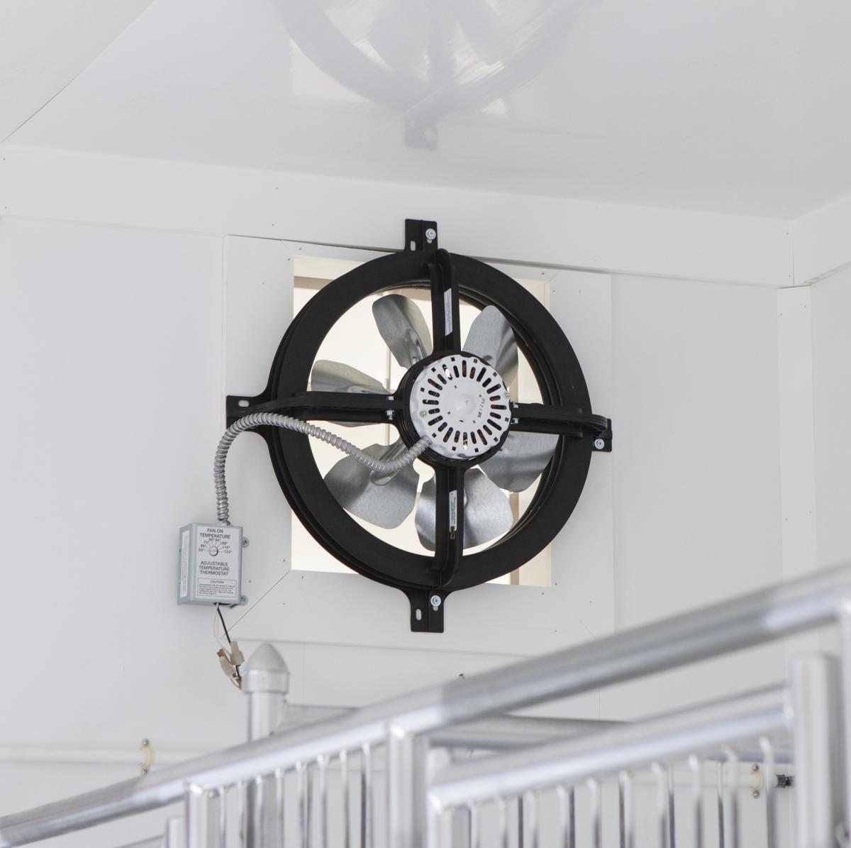 kennels for dogs exhaust fan