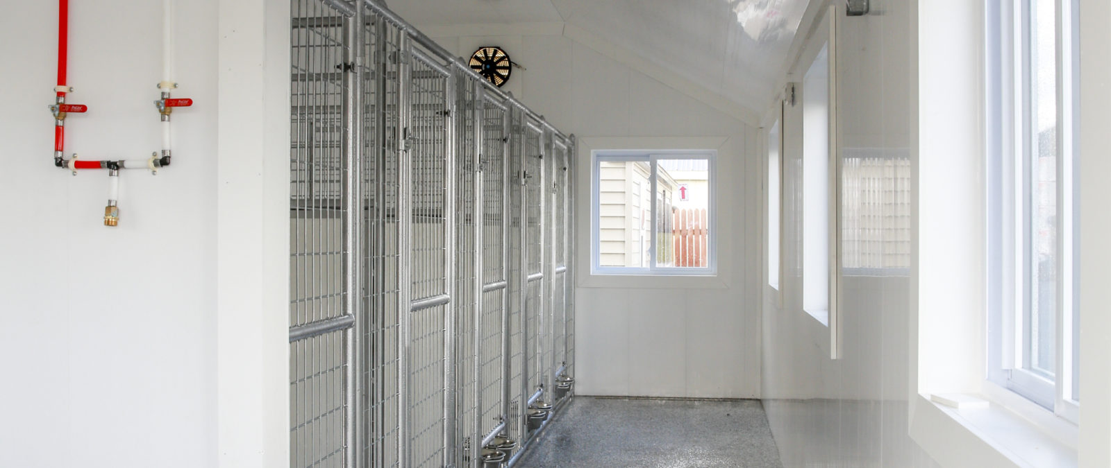 dog kennels for groomers interior view of 10x28 5 run kennel showing welded wire panels and exhaust fan
