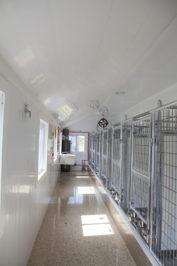 14x32 dog kennel