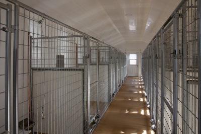 24x60-dog-kennel-interior