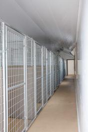 14x54-dog-kennel-interior