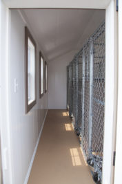 12x16 dog kennel interior