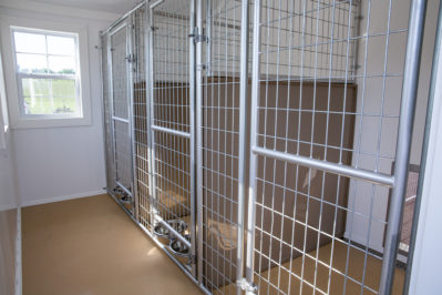 12x18 dog kennel interior