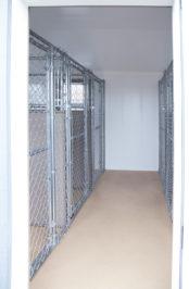 12x24 dog kennel interior