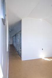 12x42 dog kennel interior