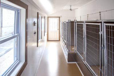 14x24 dog kennel