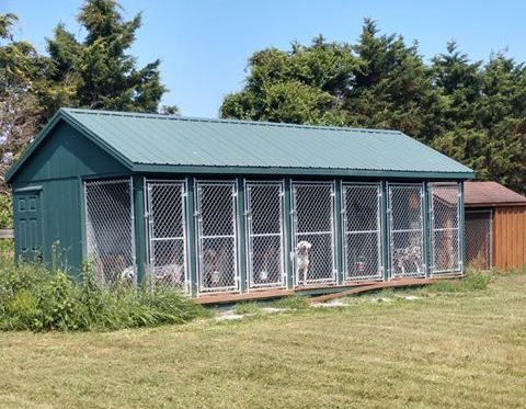 dog kennel in new jersey copy
