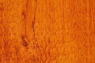 cedar stain for dog kennels