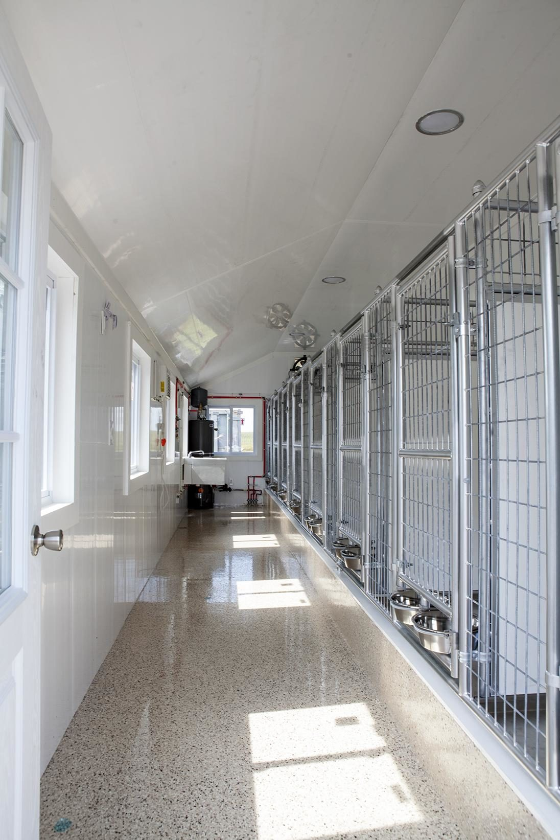 commercial insulated dog kennel design interior