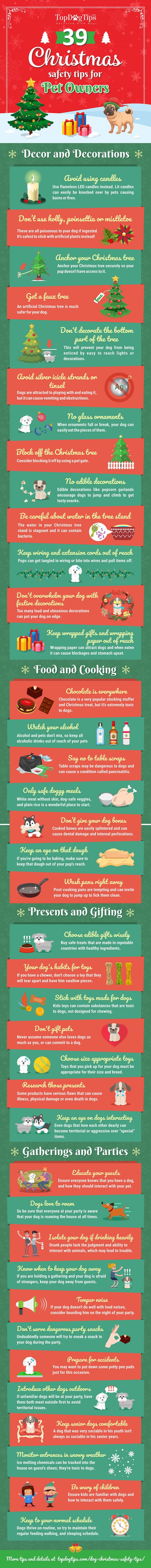 christmas safety tips for dogs