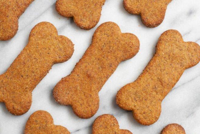 dog treats pattern wholefully