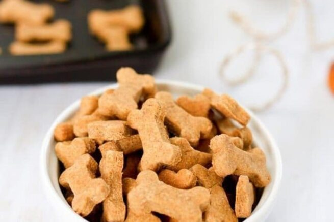 homemade peanut butter dog treats eating bird food