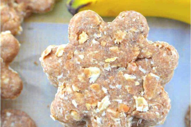 peanut butter oatmeal banana dog treats cozy cook
