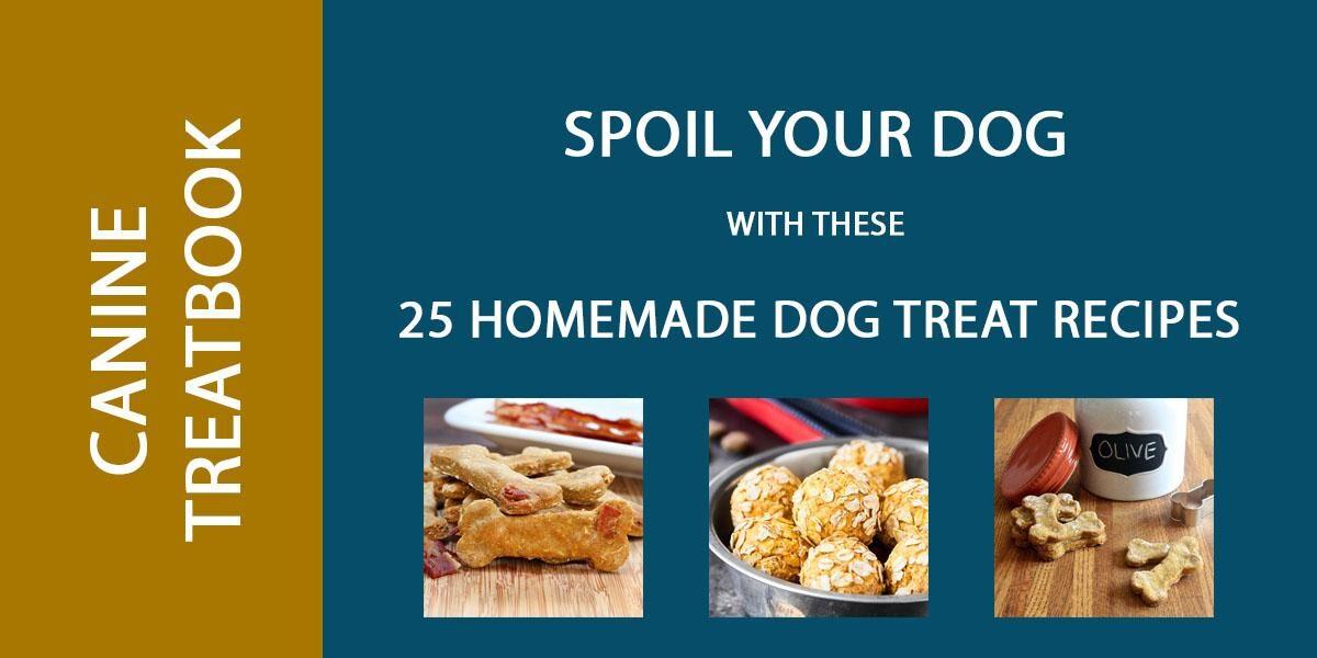 dog treats recipes header