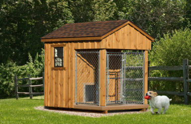 6x8 amish dog kennel